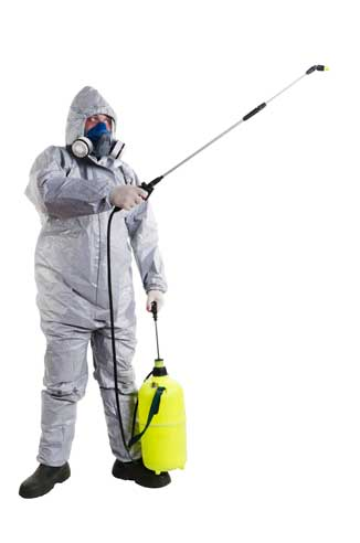 pest control company in UAE